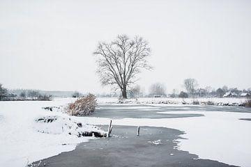 Winterlandschap van Christian Tanghe