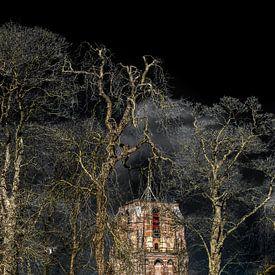 De Oldehove van Leeuwarden in de februarizon met bomen op de voorgrond van Harrie Muis