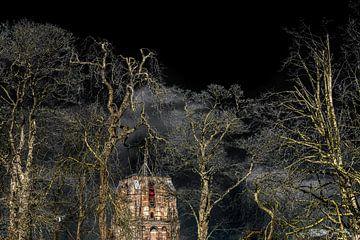 De Oldehove van Leeuwarden in de februarizon met bomen op de voorgrond
