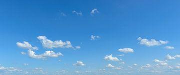 Blauwe zomerlucht met pluizige witte wolken van Sjoerd van der Wal