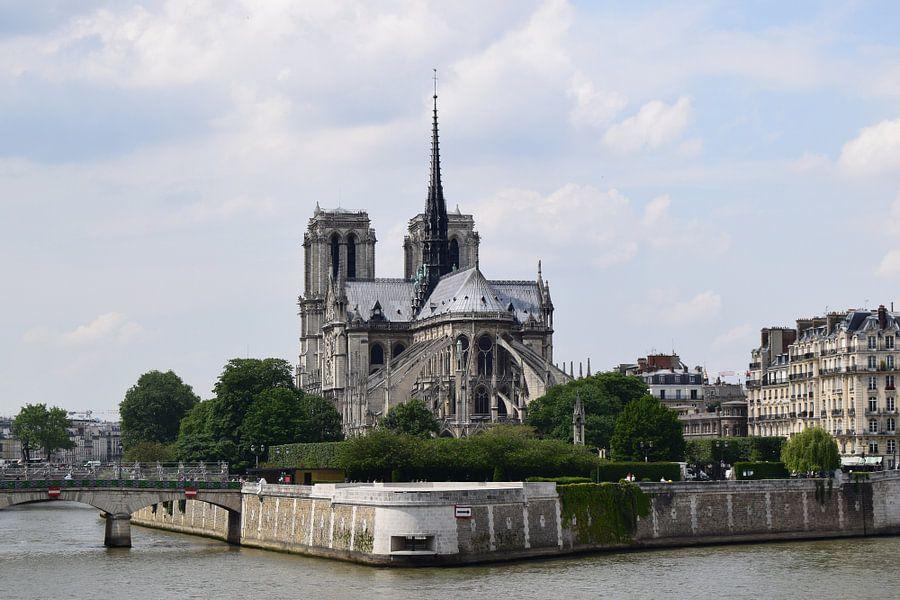 Notre Dame van Carina Diehl