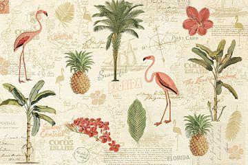 Floridian VI, Katie Pertiet van Wild Apple