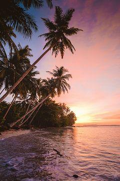 Îles Mentawaï sur Andy Troy