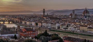 Florence Panorama van Mario Calma
