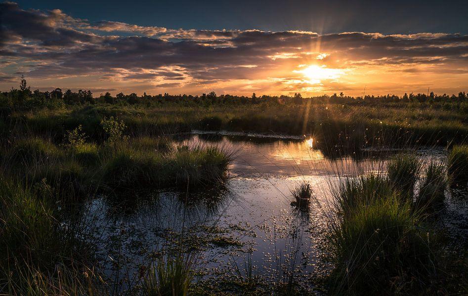 Zonsondergang op de engbertsdijksvenen van Martijn van Steenbergen