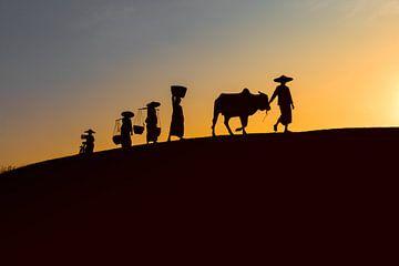 BAGHAN,MYANMAR DECEMBER 12 2015 - Landarbeiders 's avonds voor de ondergaande zon op weg naar huis.  van Wout Kok