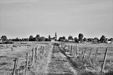 Zwart wit landschap van Marije van der Vies