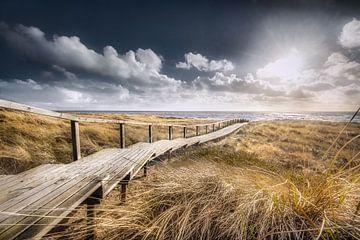 Holzweg durch die Dünen von Sylt von Fine Art Fotografie