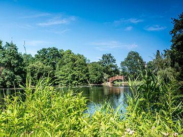 Parklandschaft des Johannapark in Leipzig von Animaflora PicsStock