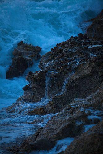 Bleu coast van