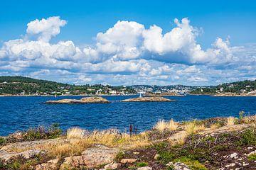 Uitzicht op de stad Arendal in Noorwegen vanaf het eiland Merdø van Rico Ködder