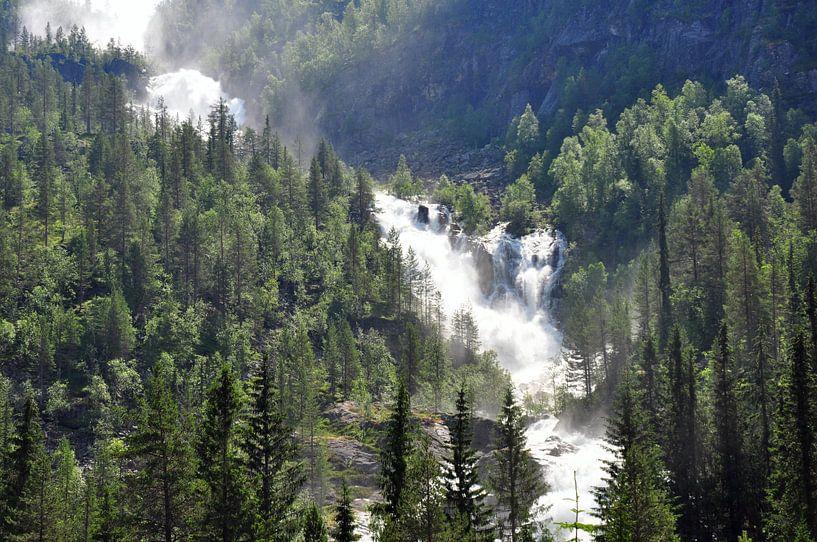 Waterval in bos van Rogier Vermeulen