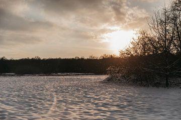 Die weiße Landschaft im Abendlicht von Floor Bogaerts
