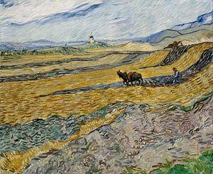 Geschlossenes Feld mit Pflüger, Vincent van Gogh - 1889