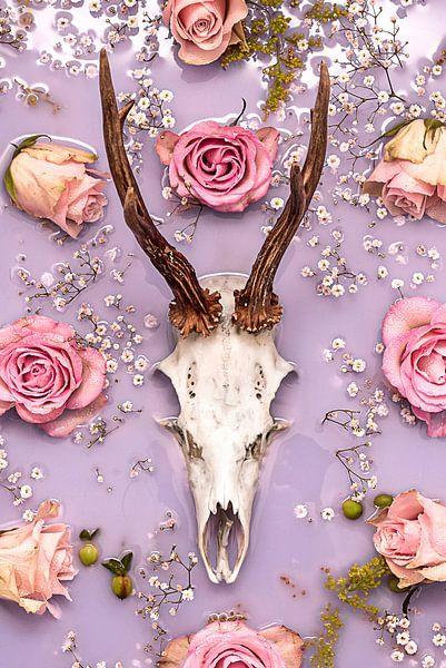 Ode aan de eeuwige liefde - Gewei / schedel hert. van Nikki Segers
