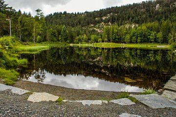 Vijver in Noorwegen van Remco de Zwijger