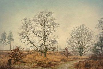 De Anton Pieck boom van Thijs Kupers