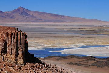 Atacama woestijn van Antwan Janssen