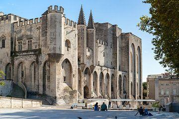 Palais Des Papes in Avignon, Frankrijk van Fotografiecor .nl