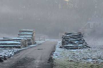stock d'hiver sur Tania Perneel