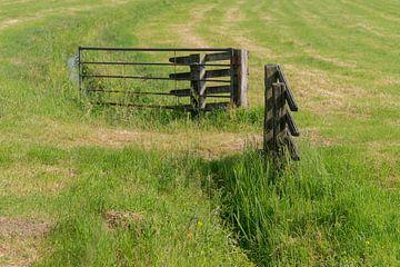 Zaun zwischen zwei Wiesen von Beeldbank Alblasserwaard