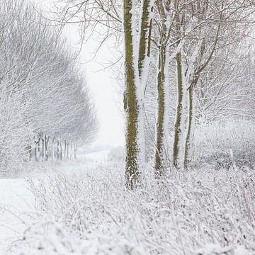 Winterlandschap von Marijke van Eijkeren