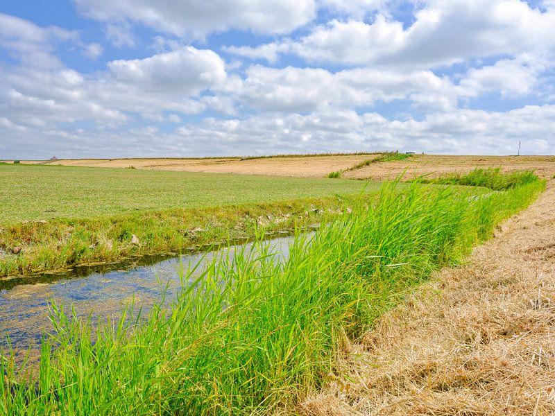 zomerlandschap Noord-Holland van eric van der eijk