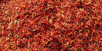 pepperoni sur Stefan Havadi-Nagy
