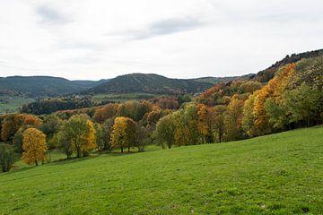 Herfst in de Vogezen