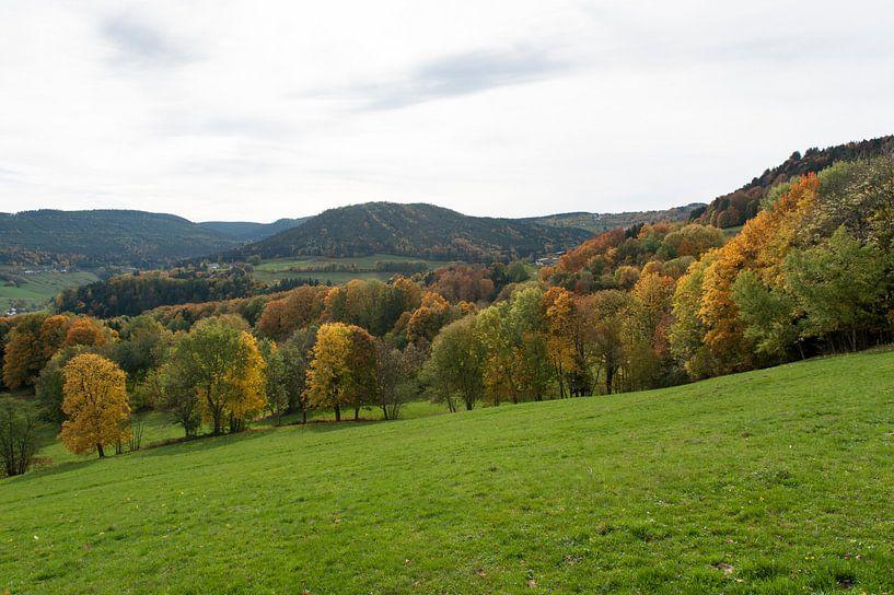 Herfst in de Vogezen van Wim Slootweg