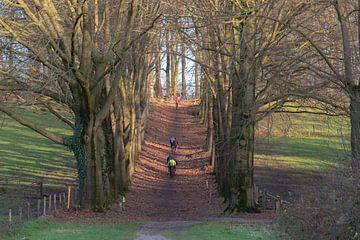 Sport im Park von Tania Perneel