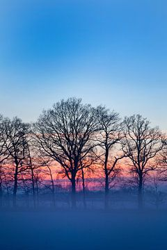 Winterlandschap met zonsondergang van Liesbeth van Asseldonk