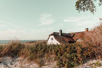 Strand Ahrenshoop van Steffen Gierok