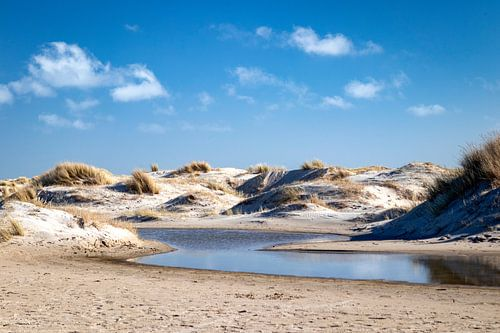 Nieuwe duinen, de Hors Texel