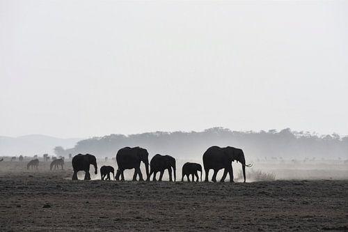 Olifanten in Amboseli National Park (Kenia) van Esther van der Linden