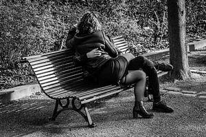 Kalverliefde op een bankje in Parijs sur