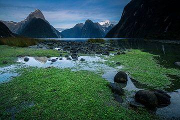 Milford Sound - Zuidereiland, Nieuw-Zeeland von Martijn Smeets