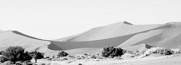 Zandduinen Deadvlei van