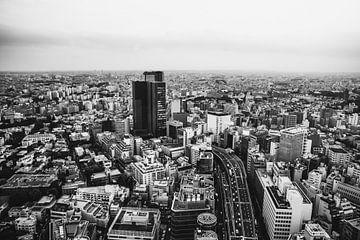 Uitzicht over Tokyo van