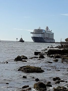 Cruiseship van Renee Alexandra Serlier