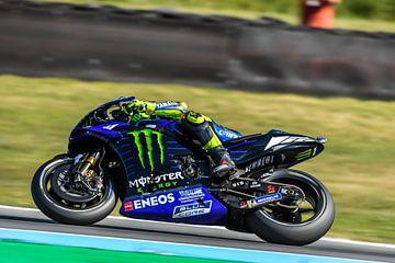 Valentino Rossi #46 Yamaha Team van Theo Groote