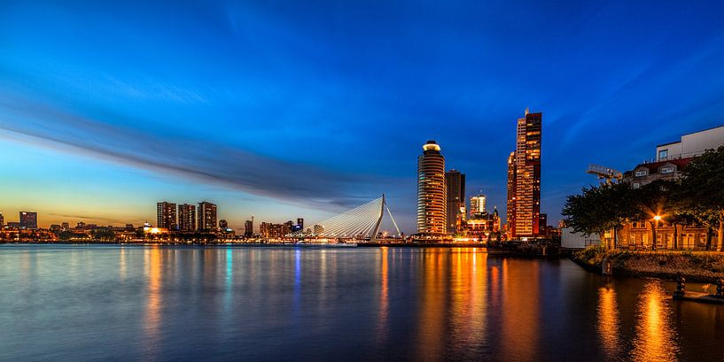Skyline van Rotterdam van Roy Poots