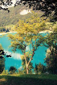 Nature Italia van