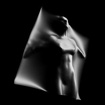 Vrouwelijke romp met doek van Jörg Hausmann