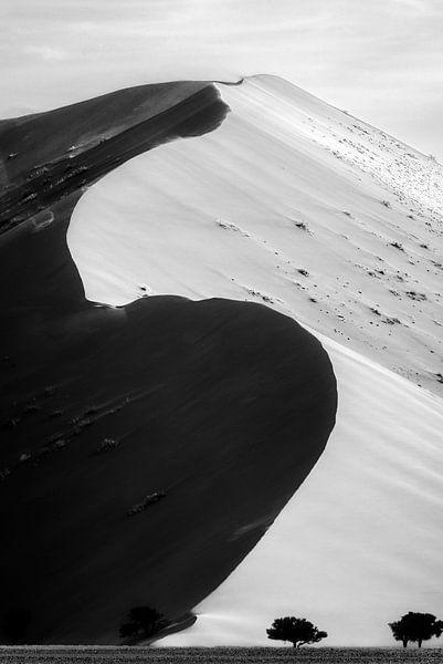 Namibische woestijn van Richard Guijt