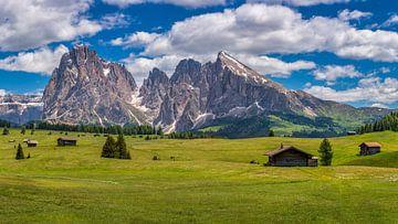 Alpe Di Siusi - Seiser Alm - Dolomieten -Italië van Teun Ruijters