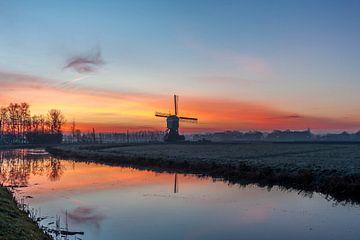 Parel van de polder von Stephan Neven