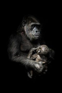 tedere aap met een baby in haar armen. Gorilla aap moeder (of haar zus) verpleegt haar kleine baby,  van Michael Semenov