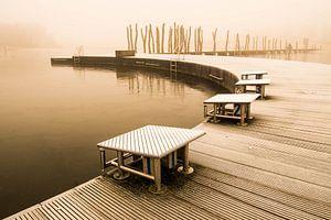 Zwembaan in winters Zeewolde