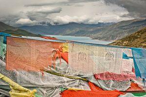 Yandrokso lake @ Tibet